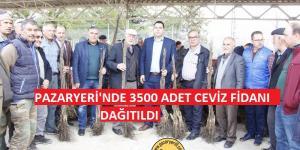 Pazaryeri'nde 3 Bin 500 Ceviz Fidanı Dağıtıldı