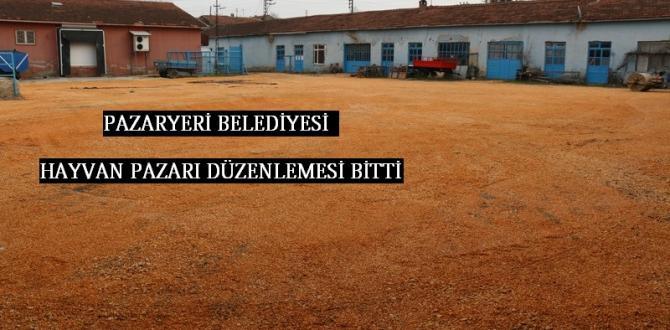 Pazaryeri Belediyesi Kurban Pazarını Düzenledi