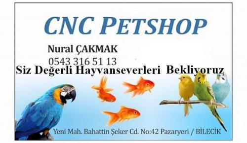 CNC PETSHOP HAYVAN SEVERLERİN HİZMETİNDE