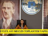 PAZARYERİ BELEDİYE MECLİSİ EYLÜL AYI TOPLANTISI