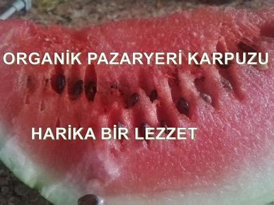 ORGANİK PAZARYERİ KARPUZU BAMBAŞKA BİR TAT