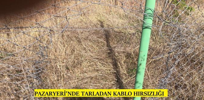 PAZARYERİNDE KABLO HIRSIZLIĞI